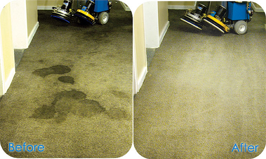 Carpet Cleaning Wrose